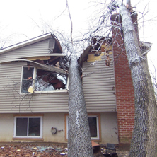A tree has fallen through a house, splitting the roof in half. An example of Storm Damage in Michigan.