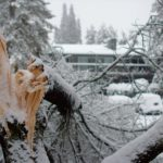 Save Money by Preventing & Reducing Winter Storm Damage