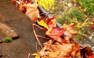 Anticipate the Change of Seasons to Better Protect Your Home